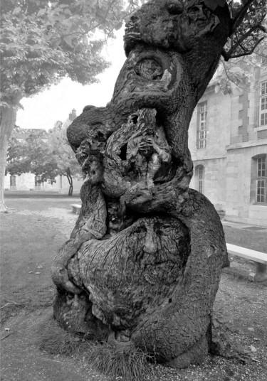 L'arbre de memoire