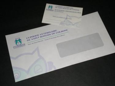 Déclinaison graphique du logo Clinique Vétérinaire