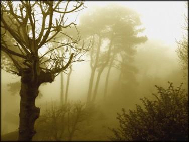effet de brouillard